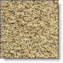 Supralite Carpet Adapter For Frieze
